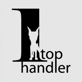 Подготовка собак к выставкам «Top Handler». 2015